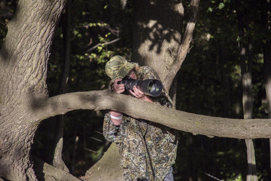 Auf der Jagd nach schönen Motiven legt sich die Hobby-Tierfotografin in der Natur auf die Lauer.