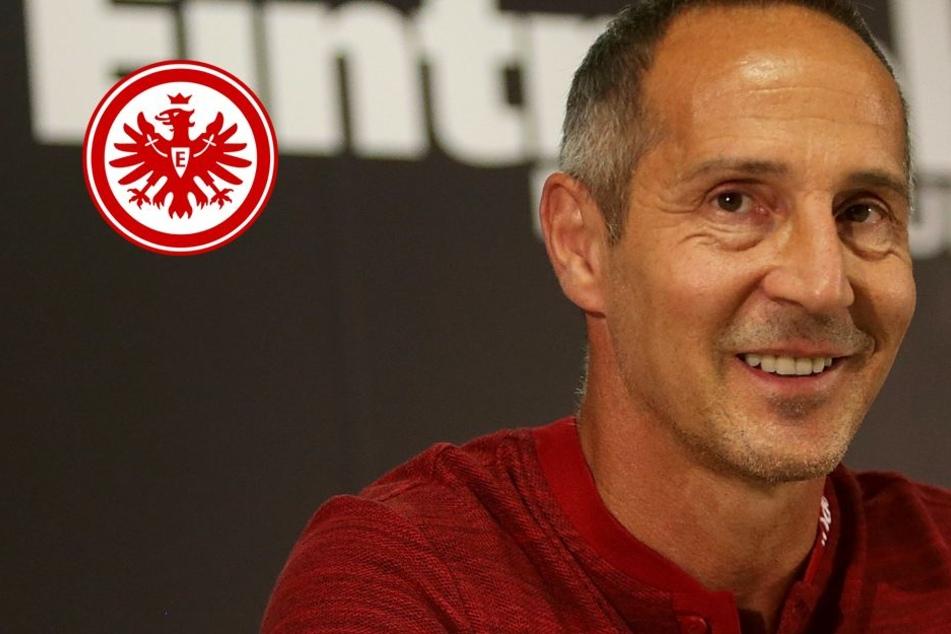 Mit Kampf und Feuereifer: So will die Eintracht den Mainz-Fluch brechen
