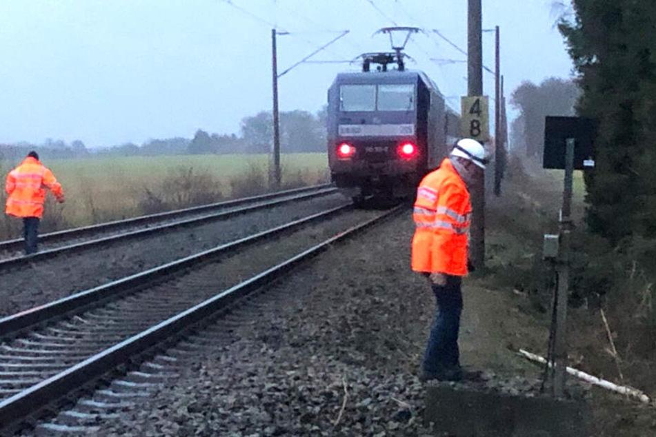 Der Intercity kam wegen eines Baumes auf der Strecke nicht mehr weiter.
