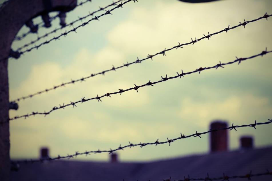 Spielte sich hier einer der größten Nazi-Morde der Geschichte ab?