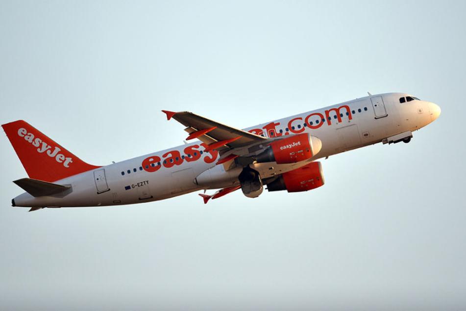 Entwarnung nach angeblichen Terror-Gesprächen im Flieger