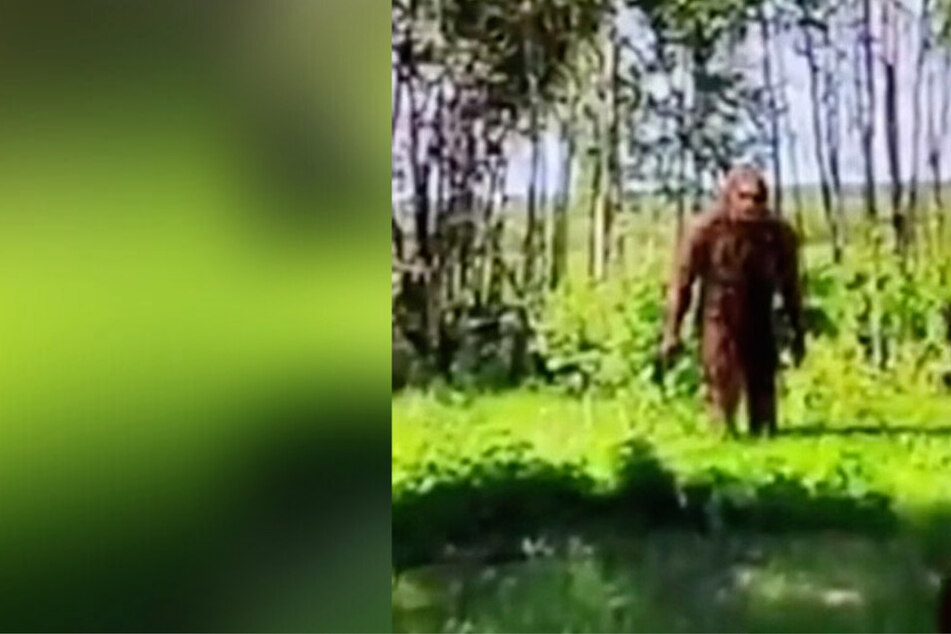 Did someone just discover Bigfoot on Google Earth?