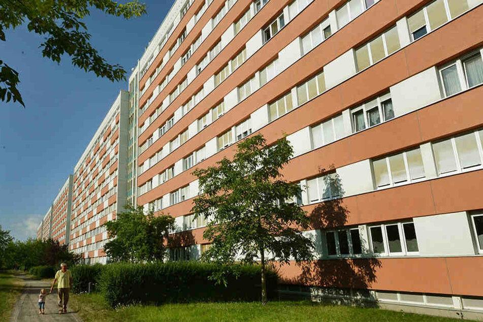 """Die """"Lange Lene"""" war der längste sogenannte Mittelgang-Plattenbau der DDR. Heute leben in den 800 Wohnungen viele ältere Menschen."""