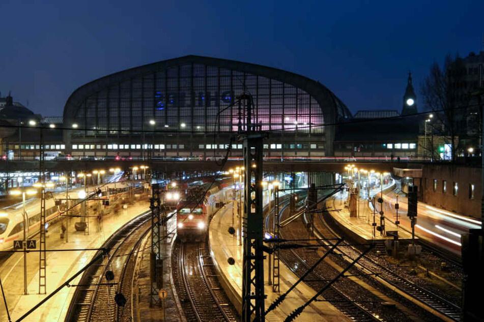 Der Hamburger Hauptbahnhof ist der mit den meisten Fahrgästen in ganz Deutschland.