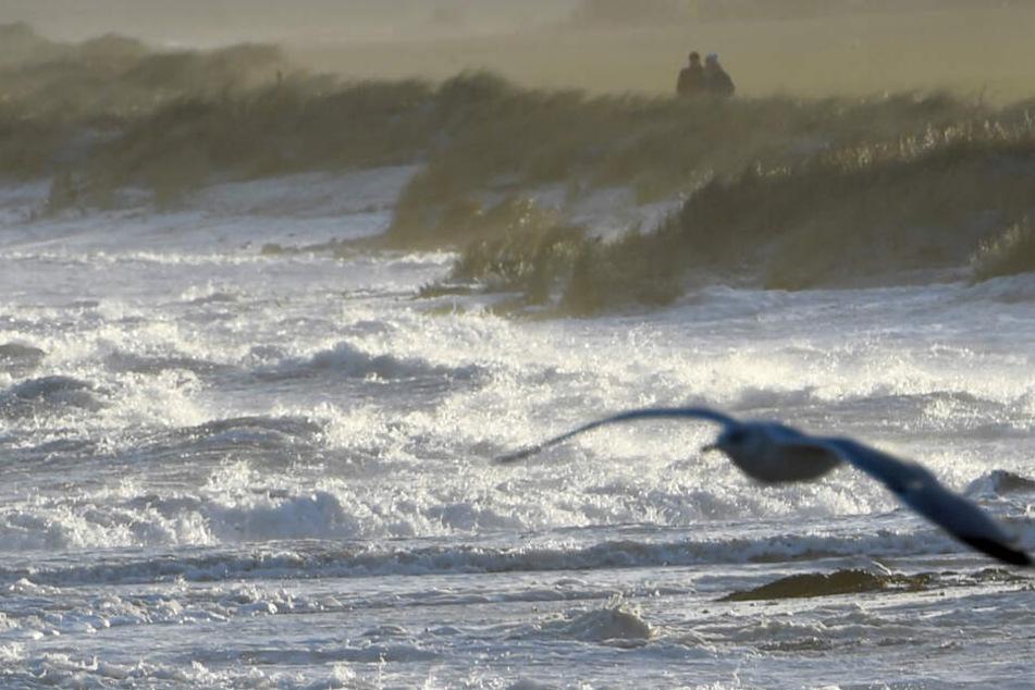 Warnung vor Sturmflut an der deutschen Ostsee-Küste