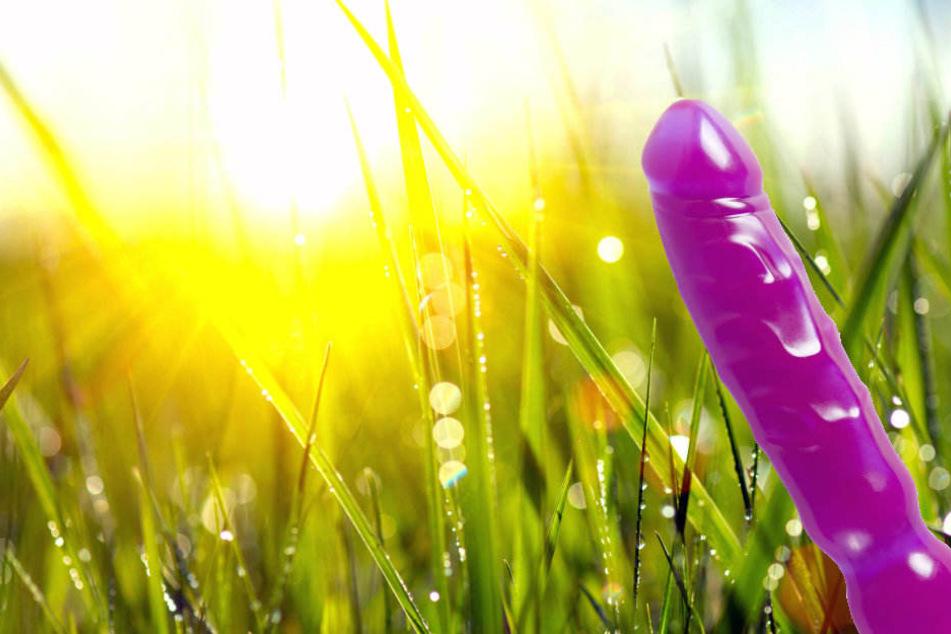 """Zufall? Das Sexspielzeug wurde in der Gemarkung """"Nasse Wiesen"""" gefunden. (Symbolbild)"""