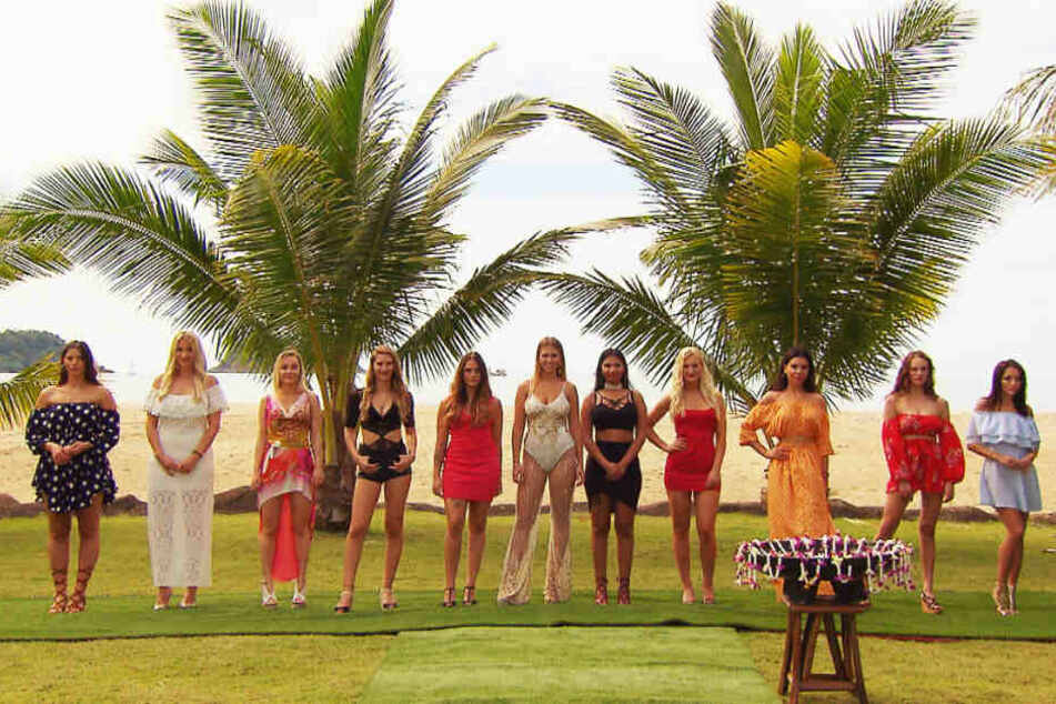 """Aufgepasst Jungs! Diese elf Ladies warten auf euch bei """"Temptation Island""""."""