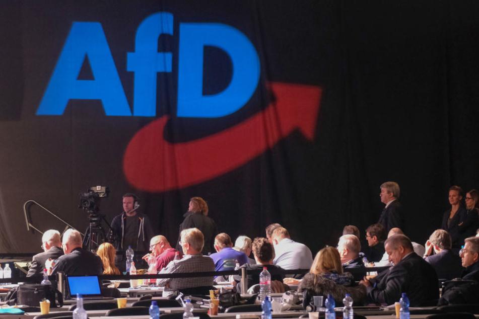 Beim AfD-Europa-Parteitag wird über den Leitantrag entschieden.