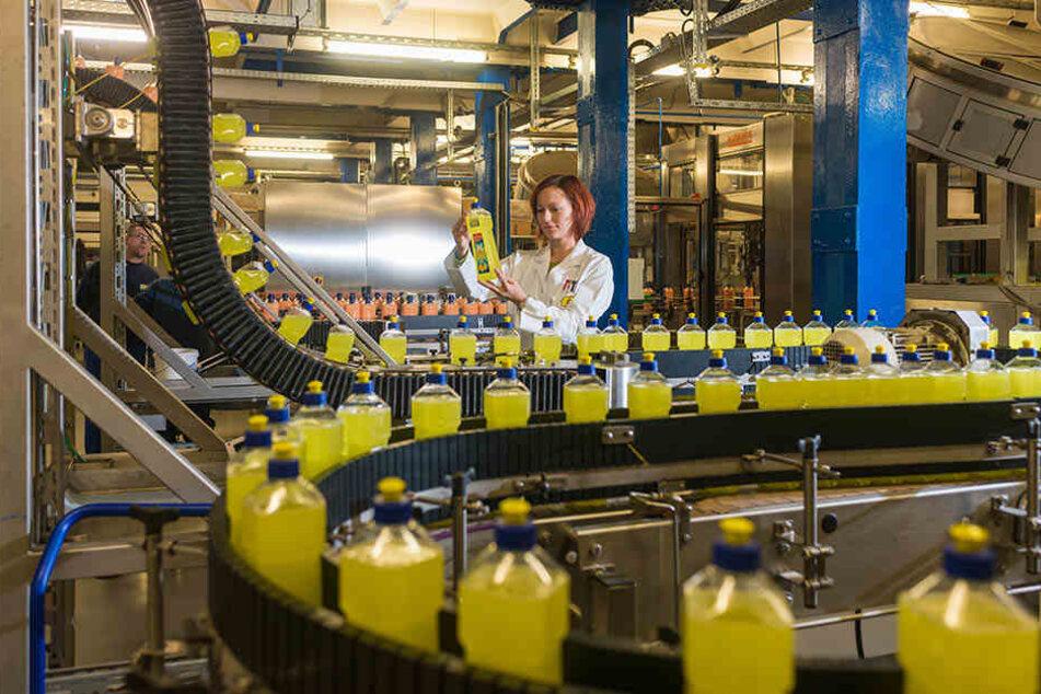 In Zittau war die Fit GmbH beim Rückkehrertag dabei. Die Firma wirbt auch um Mitarbeiter von Siemens und Bombardier in Görlitz.
