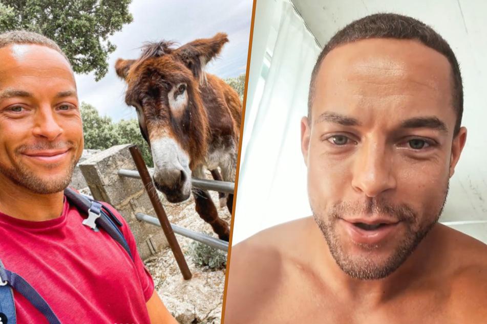 Um das Liebesleben von Andrej Mangold (34) ranken sich viele Gerüchte. Dieser mallorquinische Esel scheint ebenfalls nicht abgeneigt zu sein.