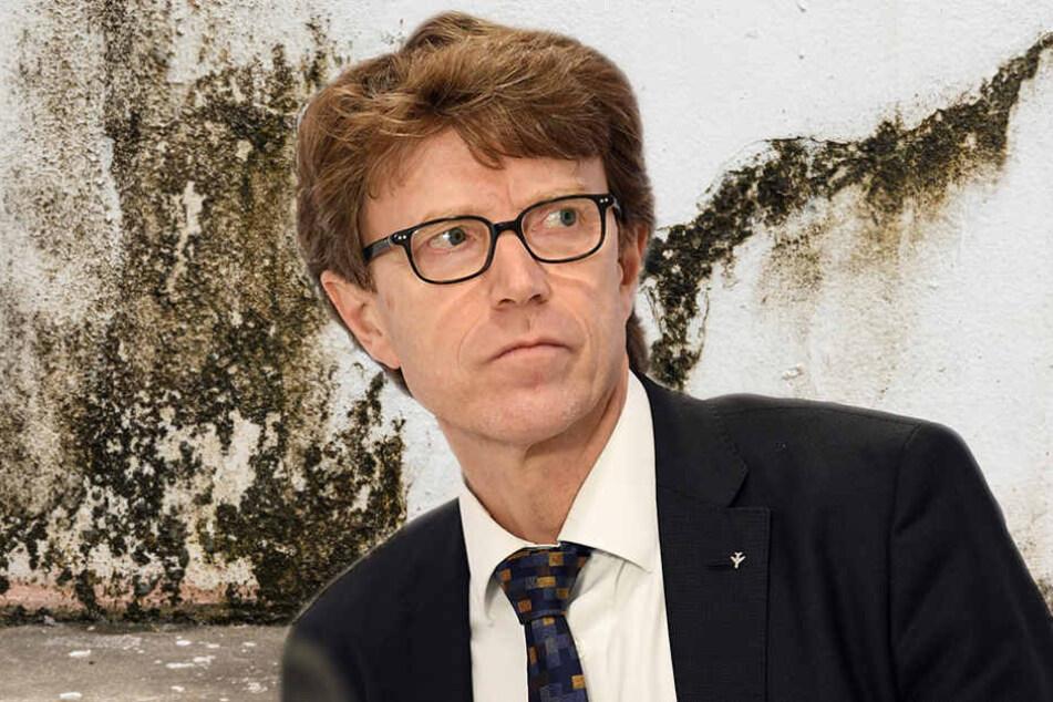 Als hätte BER-Chef Daldrup nicht schon andere Sorgen, nun kommt noch Schimmel hinzu. (Bildmontage)