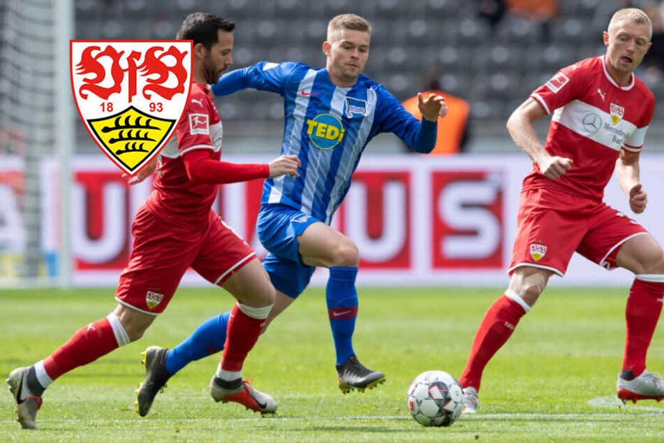 Ideenloser VfB Stuttgart von Hertha zerlegt: Willig-Effekt verpufft!