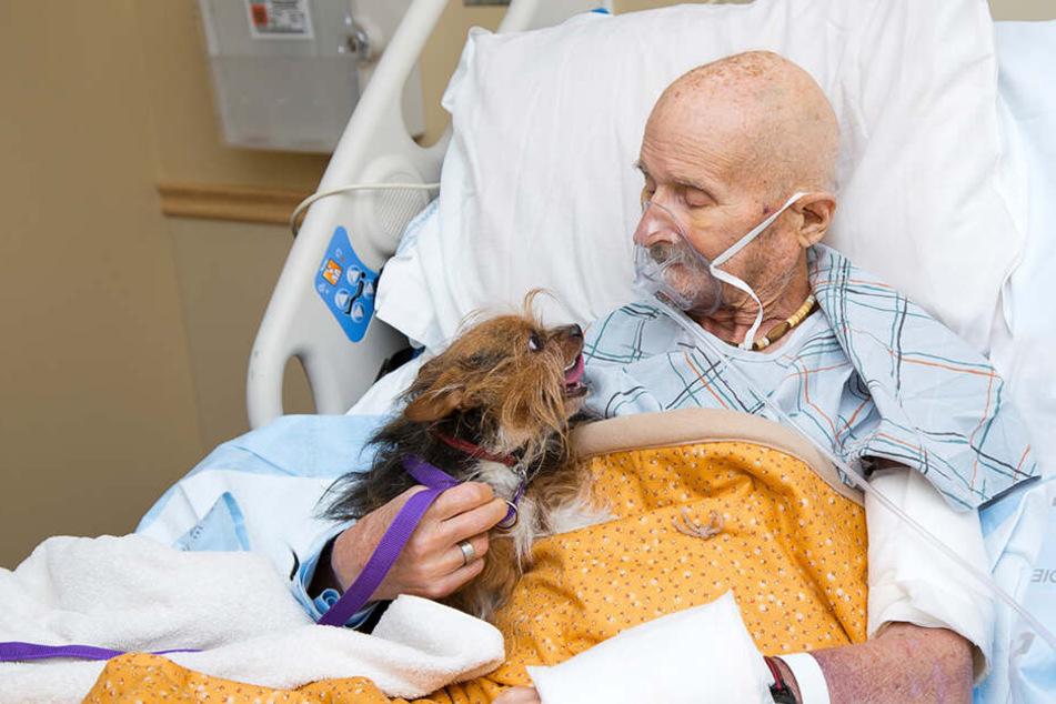 Vietnam Veteran John Vincent nimmt von seinem Hund Patch Abschied.