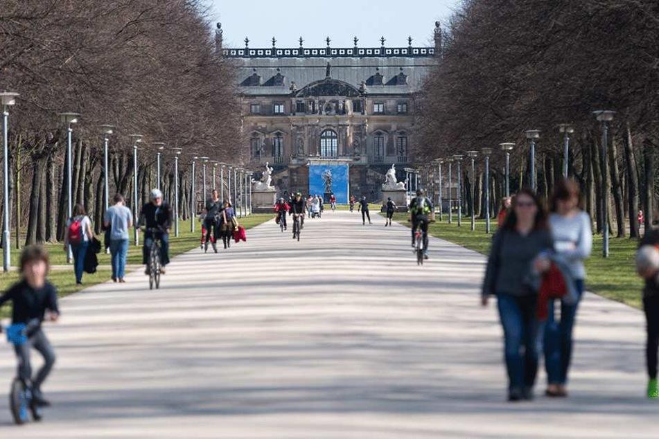 Der Große Garten gehört zu den beliebtesten Parkanlagen Deutschlands.