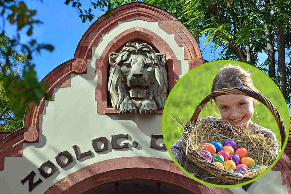 Der Leipziger Zoo lädt zum großen Oster-Spektakel ein!