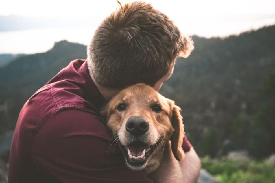 Hunden kann eine Umarmung gefallen - allerdings können sie sich dadurch auch bedroht fühlen.