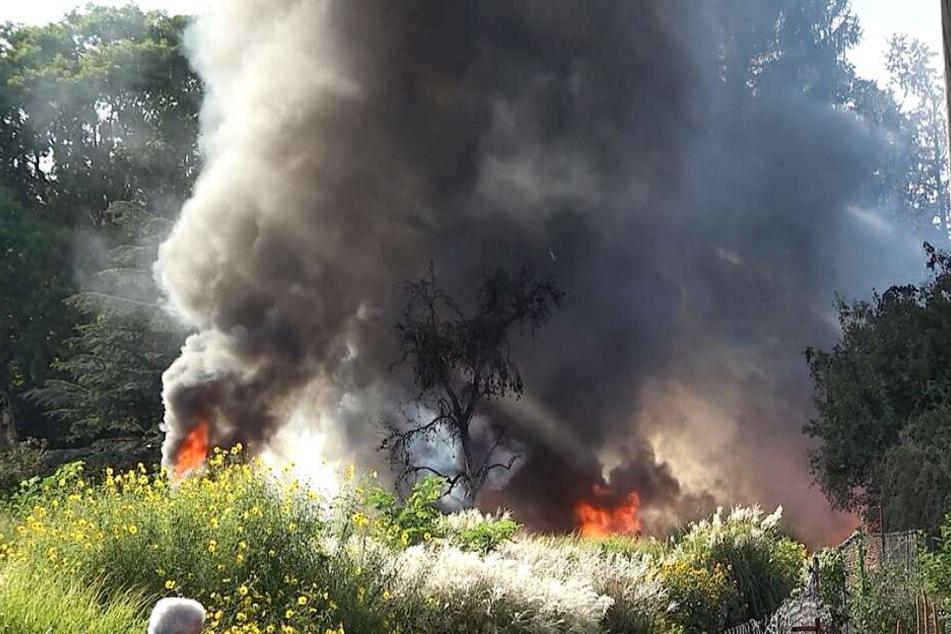 Zwei Gewächshäuser, Holzpaletten und andere Gegenstände waren in Brand geraten.