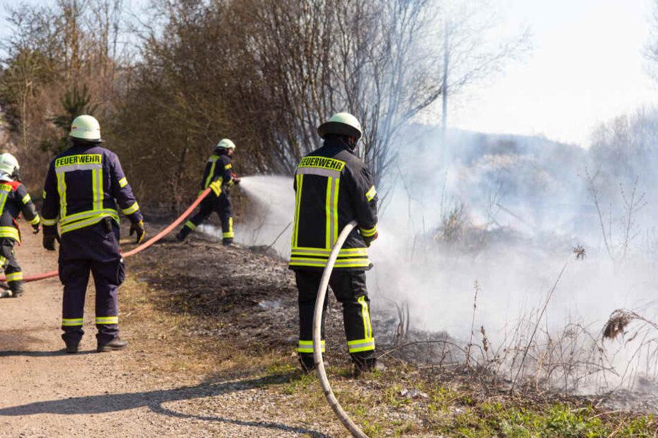 Zug bremst und sorgt für kilometerlanges Feuer