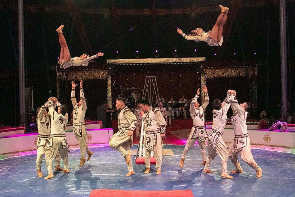 Manege frei im Weihnachts-Circus.