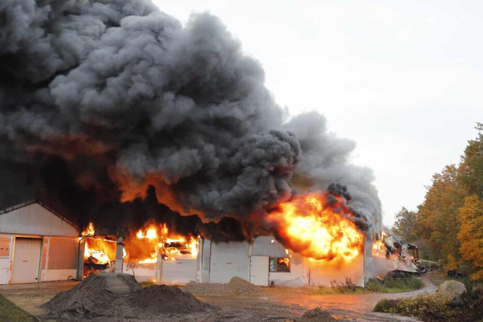 Feuer und dichter Rauch steigen aus einer Caravan-Lagerhalle nahe der niederländischen Großstadt Nimwegen auf.