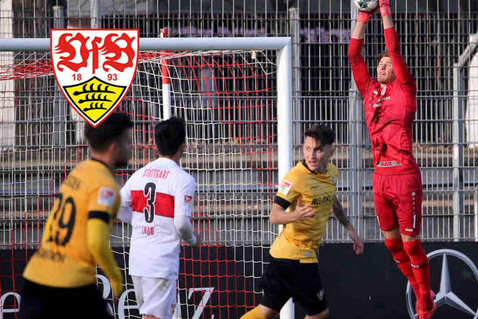 VfB Stuttgart gewinnt Test gegen Dynamo Dresden, Torwartfrage ist entschieden
