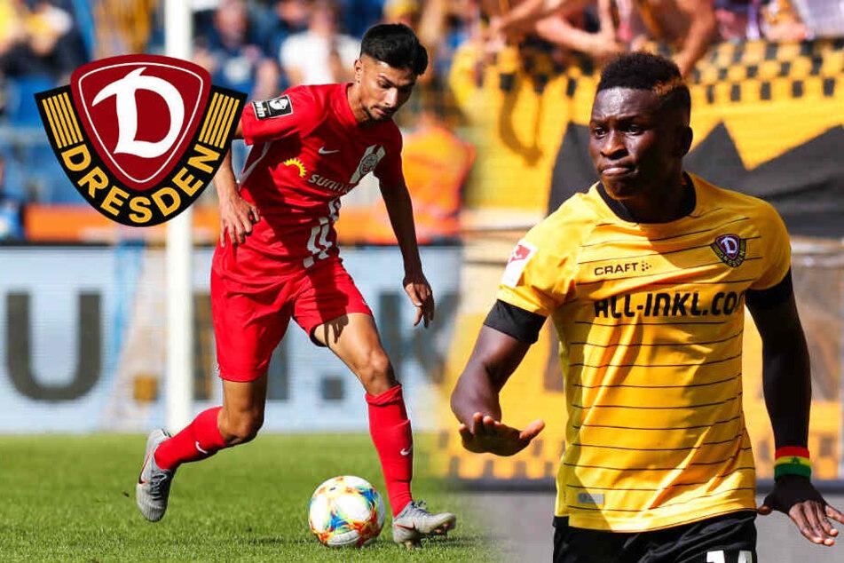 Dynamo-Stürmer Koné hat Angebot vorliegen! Kehrt Atilgan sofort zurück?