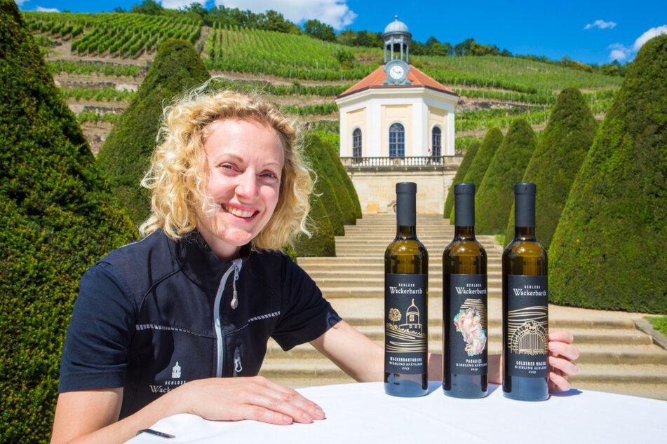 Kellermeisterin Christiane Spieler präsentiert drei von zehn edel- und restsüßen Wackerbarth-Weinen.
