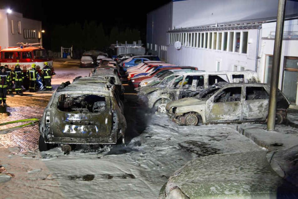 Sechs Autos musste die Feuerwehr löschen.