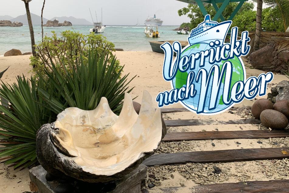 Verrückt nach Meer: Unwetter auf den Seychellen! Was passiert in der heutigen Folge?