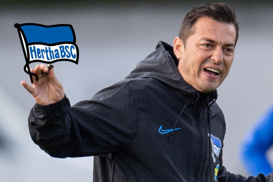 """Schicksals-Spiel in Augsburg? Hertha-Trainer Covic: """"Bin der Letzte der auf sich schaut"""""""
