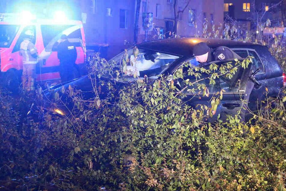 Bei dem Unfall kam der Autofahrer in einer Grünanlage auf dem Mittelstreifen zum stehen.