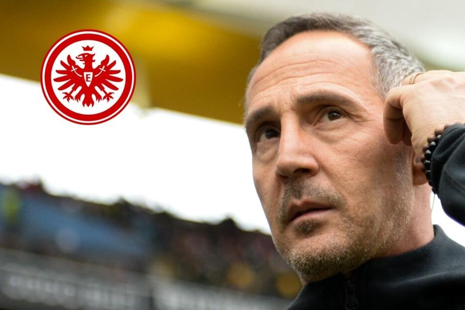 Eintracht heiß auf Saison-Endspurt: Doch Hütter warnt vor Stuttgart!