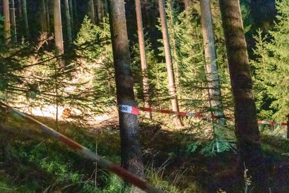 Erzgebirge: Passanten finden toten Mann im Wald