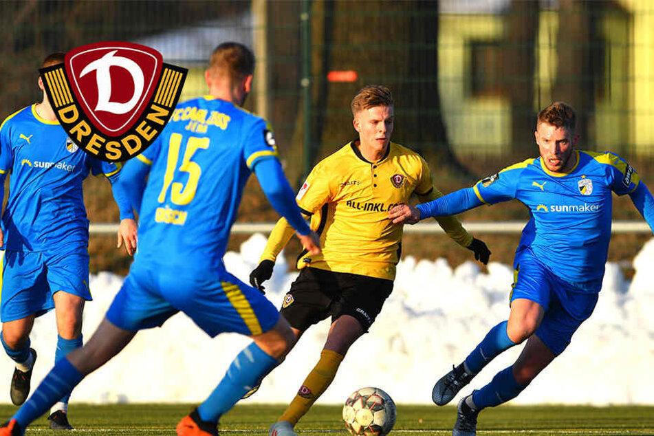 Feiert Burnic sein Dynamo-Debüt schon gegen den HSV?