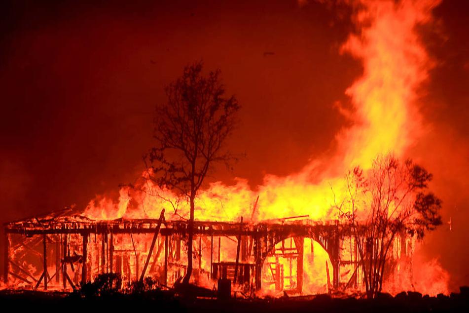 Aktuell dauern die Löscharbeiten bei einer brennenden Scheune in Heyda noch an. Wie sehr diese beschädigt wurde, ist noch unklar. (Symbolbild)
