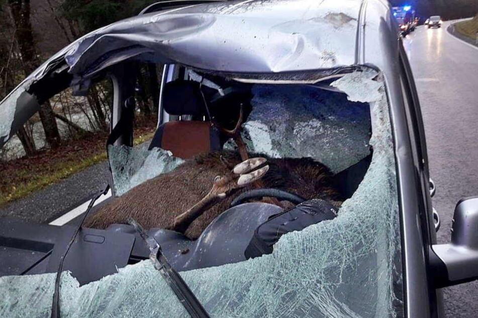 Der 47-jährige Vater und sein Sohn wurden bei dem Unfall verletzt.