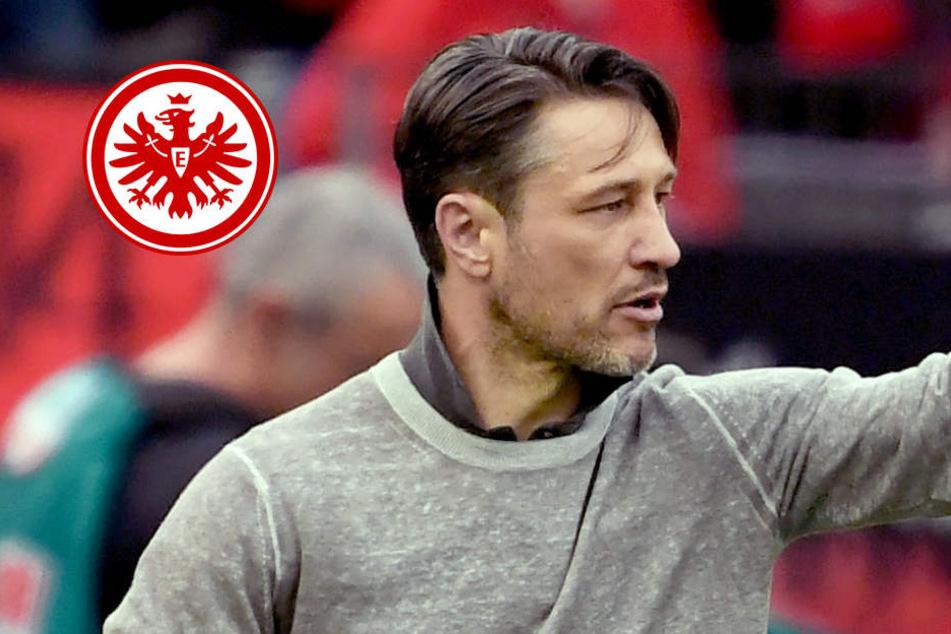 Niko Kovac legt den Fokus voll auf das K.O..-Spiel auf Schalke.