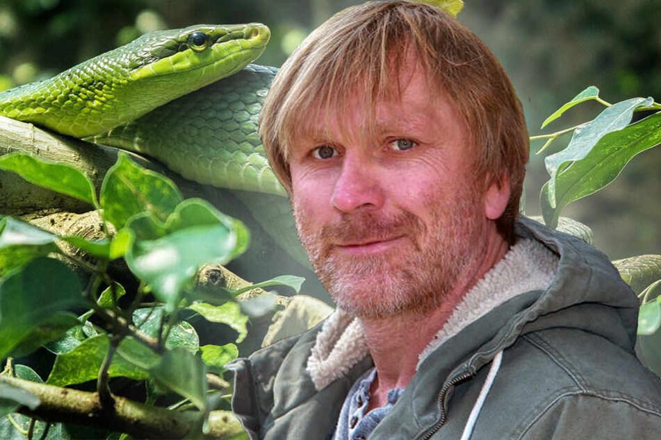 Ansgar Brinkmann macht sich schick fürs Dschungelcamp