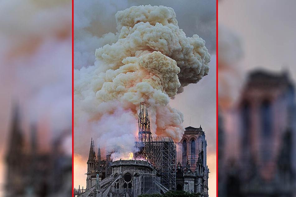 Ein verheerendes Feuer hat die weltberühmte Pariser Kathedrale Notre-Dame verwüstet.
