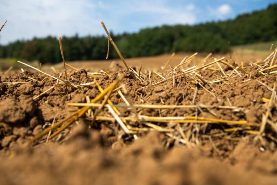 Unsichtbare Gefahr: Wie stark sind die Böden in Bayern belastet? (Symbolbild)