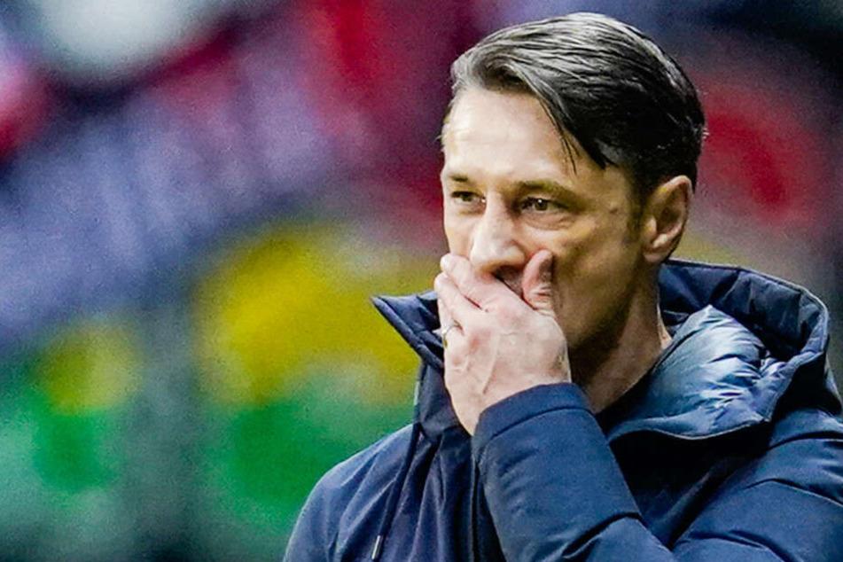Ante Covic bliebt weiter Wunschkandidat bei Hertha BSC.