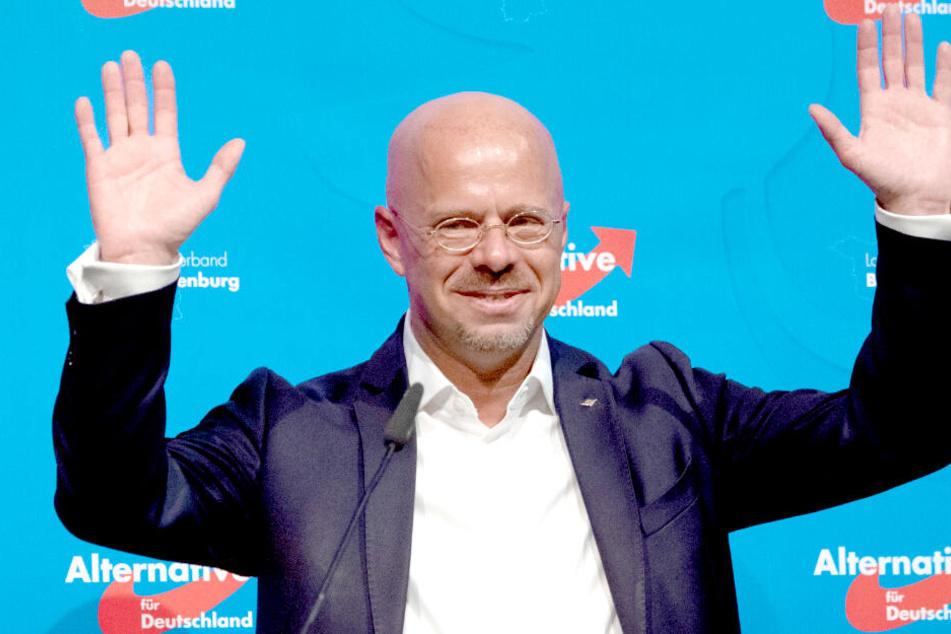 Umfrage-Schock in Brandenburg: AfD erstmals vorn!