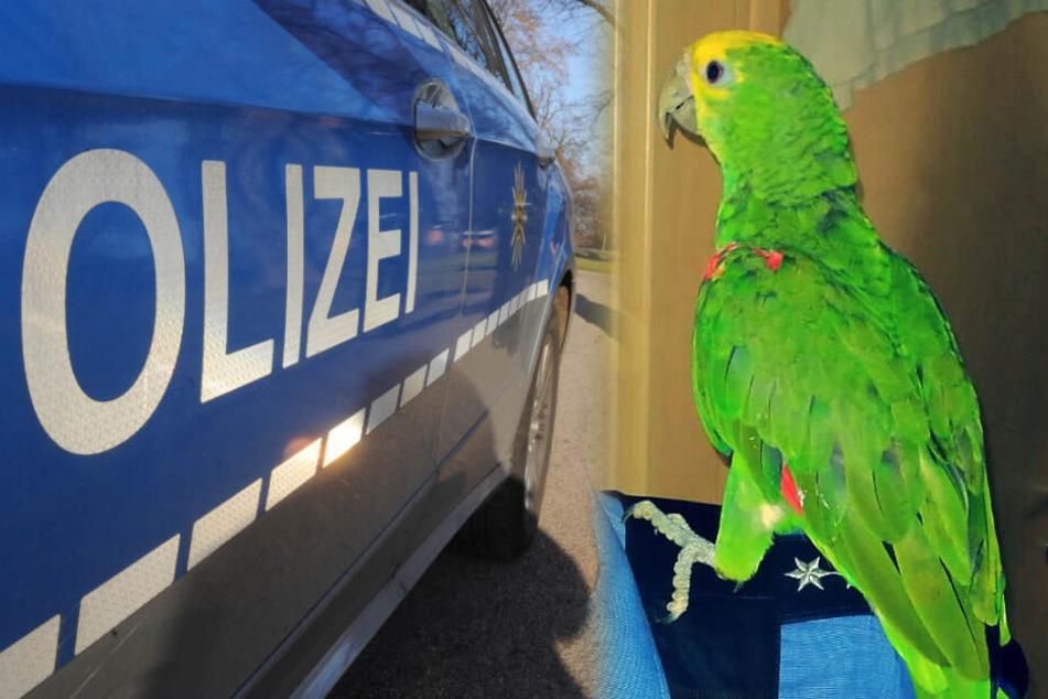 Einer der Vögel setzte sich sogar auf die Schulter einer Beamtin (Fotomontage).