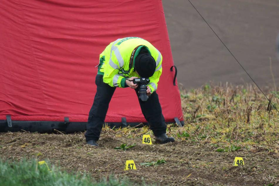 Die Fahrzeugspuren auf dem Feld könnten Spuren der furchtbaren Tat sein.