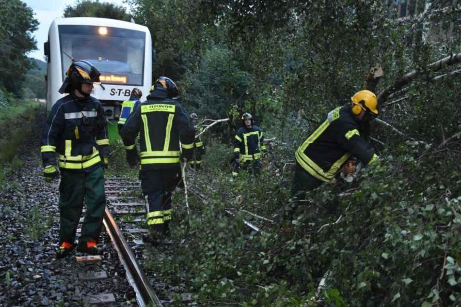 Feuerwehrleute räumen auf der Strecke zwischen Hildburghausen und Heßberg nach einem Gewitter Äste von einer Bahnstrecke.