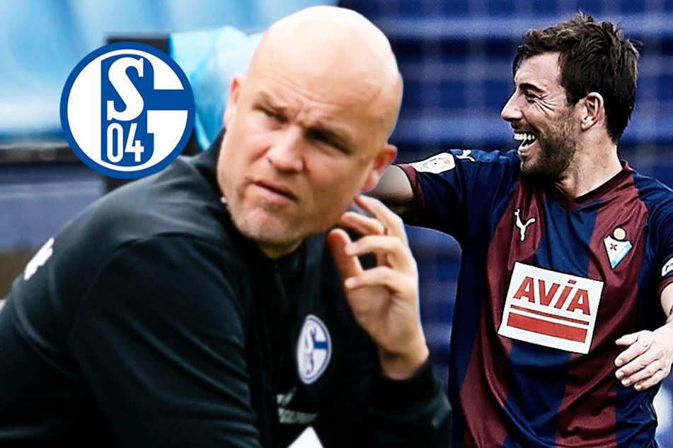 Schalkes Stürmer-Deal platzt: Sergi Enrich wegen Sex-Tape vorbestraft - was wussten die S04-Bosse?