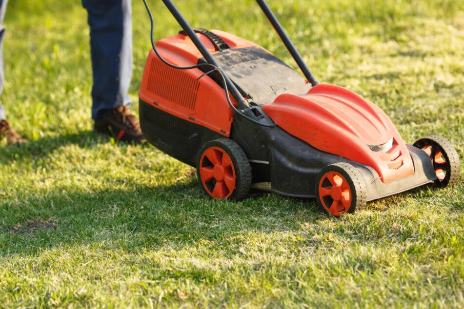 Aus Ärger über den Lärm beim Rasenmähen hat eine Frau in Memmingen dessen Kabel durchschnitten. (Symbolbild)