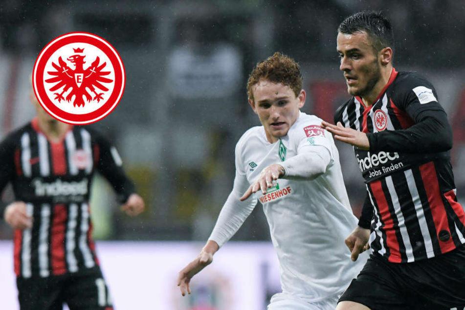 Gute Nachrichten für Eintracht-Fans: Pokal-Kick gegen Werder live im Free-TV!