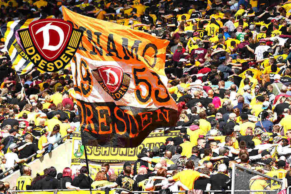Fans rennen Dynamo die Bude ein: Dauerkartenverkauf gestoppt!