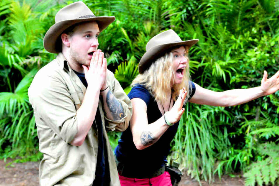 Überraschungs-Comeback: Sie kehrt in den Dschungel zurück!